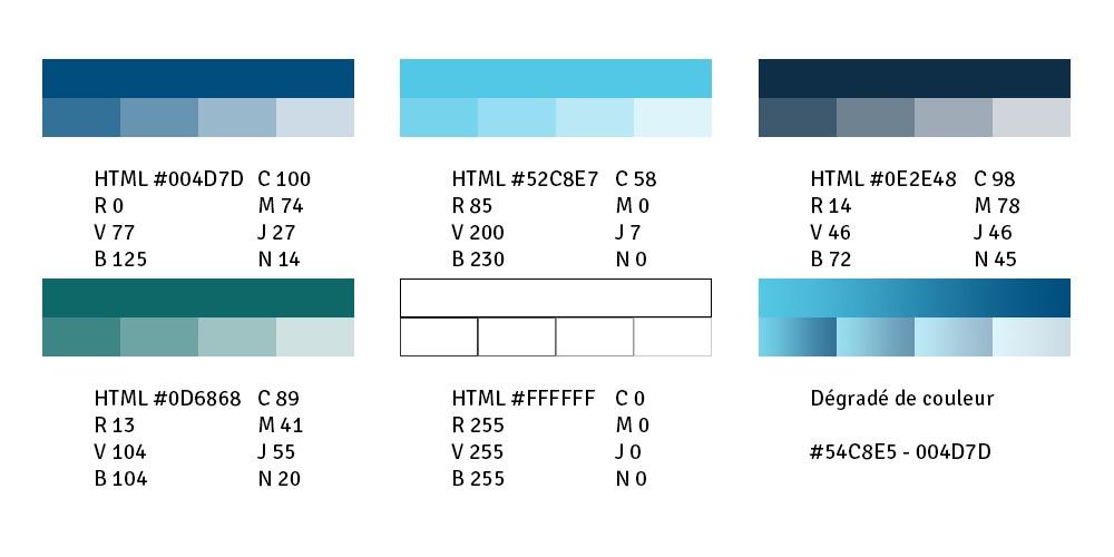 couleurs de l'identité visuelle tele-hospital